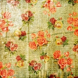 Vintage faded shabby rose background Stock Image