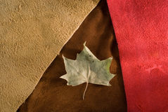 Vintage fall cow leather composition. Stock Photo