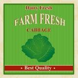 Vintage farm fresh cabbage poster Royalty Free Stock Photo