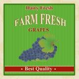 Vintage farm fresh grapes poster Royalty Free Stock Image