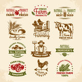 Vintage farm labels Royalty Free Stock Images