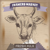 Vintage farmers market label with milk cow. Royalty Free Stock Photos
