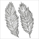 Vintage Feather vector set. Hand-drawn illustration. Stock Photos