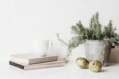 Vintage feminine still life scene. Composition of rosemary herb in old metal flower pot, books, cup of coffee and pears