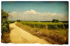 Vintage field Stock Image
