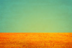 Vintage field and sky background, Grungy vintage background Royalty Free Stock Photos