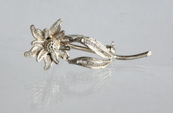 Vintage filigree silver brooch Flower Edelweiss Stock Images