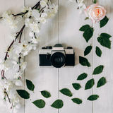 Vintage film camera center, sakura branch, pink rose flowers and leaves on the white wooden desk. Top view, flat lay Stock Photo