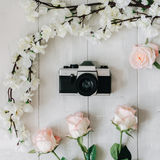 Vintage film camera in the middle, sakura branch, pink rose flowers on the white wooden desk. Top view, flat lay Stock Photos