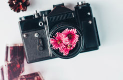 Vintage film camera, pink flowers and film on white background. Vintage film camera, pink flowers and film Royalty Free Stock Photography