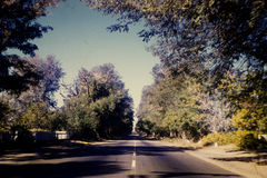 Vintage Film Photo of a Tree Lined Road. Vintage photo taken in the early 60s of a tree lined road on a beautiful sunny day. Photo most likely taken in Royalty Free Stock Photography