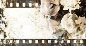 Vintage film strip frame with roses. Retro design element Stock Images