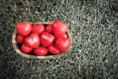Vintage filter, A lot of heart in wood bucket with be mine word Stock Photos