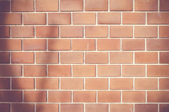 Vintage filter :Orange ruled brick wall with tree shadow texture Stock Images