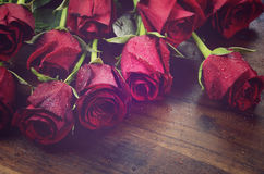 Vintage filter red roses Royalty Free Stock Image