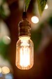 Vintage filter : Vintage lightbulb hanging on tree. Stock Image