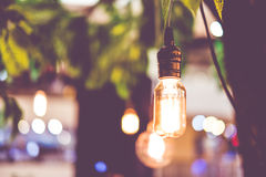 Vintage filter : Vintage lightbulb hanging on tree Stock Photo