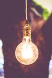 Vintage filter : Vintage lightbulb hanging on tree Stock Photos