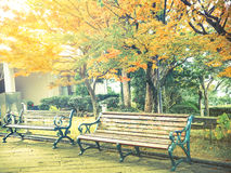 Vintage filter of wooden bench in the park in autumn Stock Image