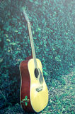 Vintage filtered acoustic guitar in garden. Royalty Free Stock Photos