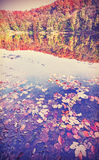 Vintage filtered autumn landscape with reflection in a lake Stock Photo