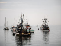 Vintage fishing boat in Monterey harbor, California Stock Photos