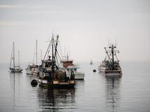 Vintage fishing boat in Monterey harbor, California Stock Photos