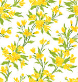 Vintage floral. Stylish vintage floral seamless pattern. EPS8 vector Royalty Free Stock Photography