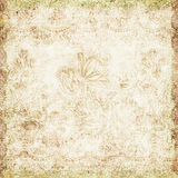 Vintage floral antique background theme. Vintage floral grunge background with an antique style royalty free stock photo