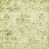 Vintage floral antique background theme Stock Image