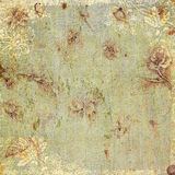 Vintage floral antique background theme Royalty Free Stock Photos