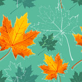 Vintage floral autumn (fall) seamless background with maple leaves Stock Photos