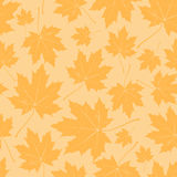 Vintage floral autumn (fall) seamless pattern with maple leaves Royalty Free Stock Photos