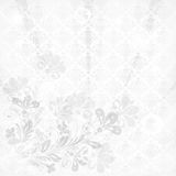 Vintage floral  background Stock Photos