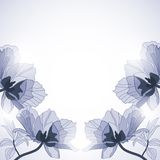 Vintage floral background Stock Image