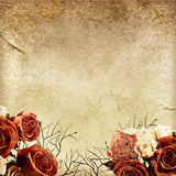Vintage floral background. Stock Photos