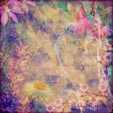 Vintage floral background with Australian flora Stock Images