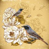 Vintage floral background with birds Stock Photos