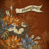 Vintage floral background with birds Stock Image