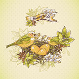Vintage floral background with birds and nest Stock Image