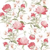 Vintage floral background. Elegance seamless pattern with peony. And alstroemeria flowers vector illustration