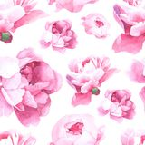 Floral watercolor seamless pattern royalty free illustration