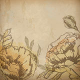 Vintage floral background with flowers drawing. Vintage floral background with artistic flowers drawing on old textured paper. EPS 10 vector illustration Royalty Free Stock Image