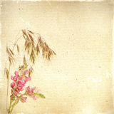 Vintage floral background with grass and flowers on a brown back Stock Photo