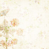 Vintage floral background Royalty Free Stock Images