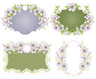 Vintage floral background Stock Photo
