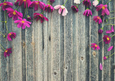 Vintage floral background. Summer flowers on weathered wooden, t