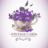 Vintage Floral Background with Violets in a Cup Stock Photos
