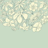Vintage floral border Royalty Free Stock Images