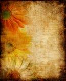 Vintage floral border Stock Images